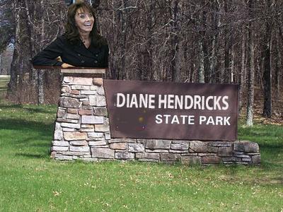 Diane Hendricks Fitzwalkerstan
