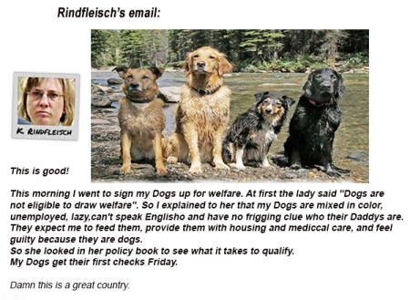 rindfleisch_email2
